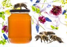 Miel y abejas y flores Fotos de archivo