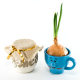 Miel y cebollas Fotos de archivo libres de regalías