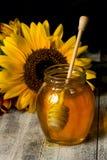 Miel y girasol Foto de archivo