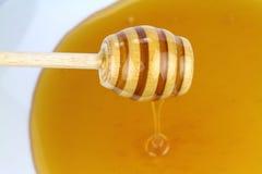 Miel y Honey Dipper Foto de archivo libre de regalías