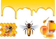 Miele, ape, insieme di vettore dei honeycells Immagini Stock Libere da Diritti