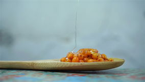 Miele che versa in un cucchiaio con seabuckthorn video d archivio