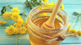 Miele, dessert del fiore del crisantemo su fondo di legno, sgocciolatura del movimento lento stock footage