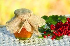 Miele e bacche della cenere e del viburno di montagna Fotografia Stock
