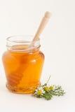 Miele e camomilla immagine stock libera da diritti