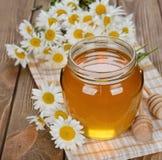 Miele e camomilla immagini stock libere da diritti