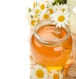 Miele e camomilla fotografie stock