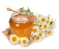 Miele e camomilla immagini stock