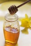 Miele e cucchiaio fotografia stock