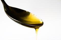 Miele e cucchiaio Fotografia Stock Libera da Diritti