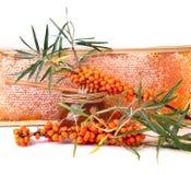 Miele ed olivello spinoso Immagine Stock