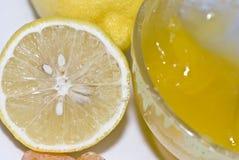 Miele fresco e limone sugoso immagine stock libera da diritti