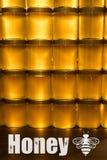 Miele giallo dorato in barattolo di vetro sullo spazio della copia del primo piano del bordo di legno con il textspace di logo de Fotografia Stock