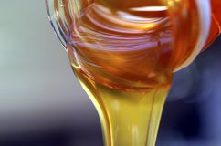 Miele organico Fotografia Stock