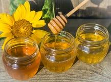 Miele in tre barattoli con un cucchiaio di legno e un fiore del girasole al sole immagine stock