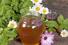 Miele in un vaso Fotografia Stock