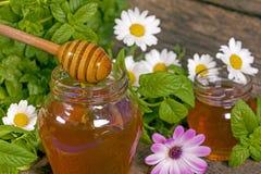 Miele in un vaso Immagine Stock