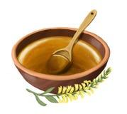 Miele in una ciotola con un cucchiaio di legno e un ramo del melilotus Isolato su bianco Fotografia Stock