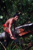 Miembro tribal Aman que recoge comidas de un árbol caido del sagú en el midd foto de archivo libre de regalías