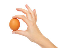 mienia jajka ręki mienie Zdjęcie Stock