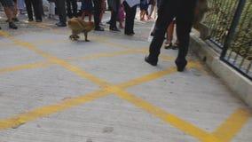 Mientras que un mono intenta robar la botella de agua del turista son el segundo mono que viene y atacar primer metrajes