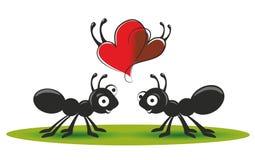 Mieren stock illustratie