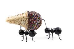 Mieren die de Kegel van het Roomijs van het Graangewas dragen royalty-vrije stock foto's