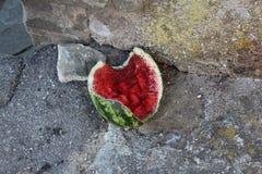 Mieren en watermeloen Royalty-vrije Stock Foto's