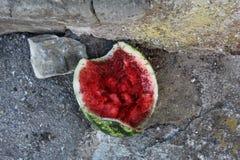 Mieren en watermeloen Royalty-vrije Stock Afbeeldingen