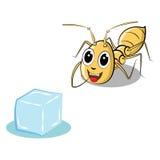 Mierenbeeldverhaal en suiker Stock Afbeelding