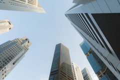 Mierenmening voor het inbouwen van Singapore Royalty-vrije Stock Foto's