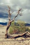 Śmiertelna Dolinna panorama Zdjęcia Stock