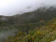 Śmiertelna droga od Coroico los angeles Paz, Boliwia obraz stock
