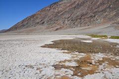 Śmiertelny Dolinny park narodowy Obraz Stock