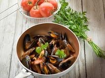 Miesmuschel mit Tomatensauce Lizenzfreies Stockfoto