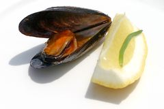 Miesmuschel und Zitrone Lizenzfreie Stockfotos