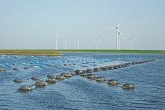 Miesmuschelbanken im Oosterschelde in Zeeland an einem Windmühlenpark lizenzfreie stockbilder
