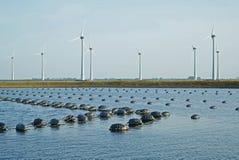 Miesmuschelbanken im Oosterschelde in Zeeland an einem Windm?hlenpark lizenzfreie stockfotografie