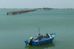 Miesmuschelbearbeitung, Scardovari-Lagune, adriatisches Meer, Italien Stockfotografie