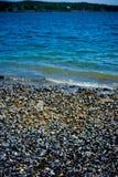 Miesmuscheln auf Küstenlinie im Stangen-Hafen Maine Lizenzfreies Stockfoto