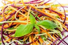 Miesza czerwień, kolor żółtego, ju, pomarańczowego marchewek, zucchini i ogórka, znakomicie Fotografia Stock