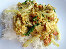 Miesza pieczonego kurczaka z curry'ego proszkiem & Tajlandzkimi jaśminowymi ryż Fotografia Stock