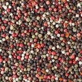 Mieszający różni mili peppercorns obrazy stock