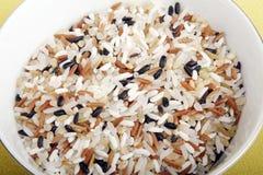mieszający ryż fotografia stock