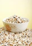 mieszający ryż zdjęcie stock