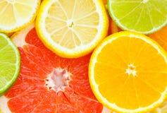 mieszająca cytrus owoc Obrazy Stock