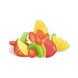 Mieszana owocowa sałatka ilustracja wektor