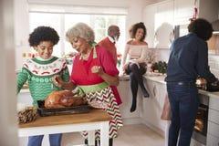 Mieszana rasa, wielo- pokolenie rodzina opowiada w kuchni podczas gdy przygotowywają Bożenarodzeniowego gościa restauracji wpólni zdjęcie royalty free