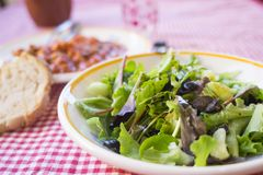 Mieszana sałatka z dzikimi zieleniami Obrazy Stock