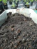 Mieszana ziemia w wheelbarrow Fotografia Stock